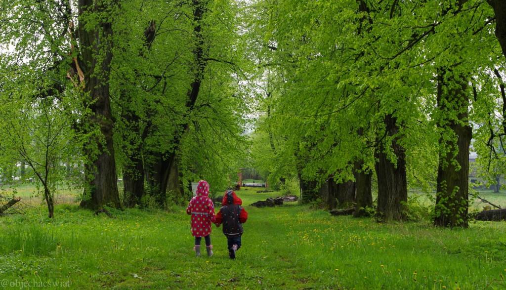 Cerkwie i bociany czyli majówka w Polsce wschodniej